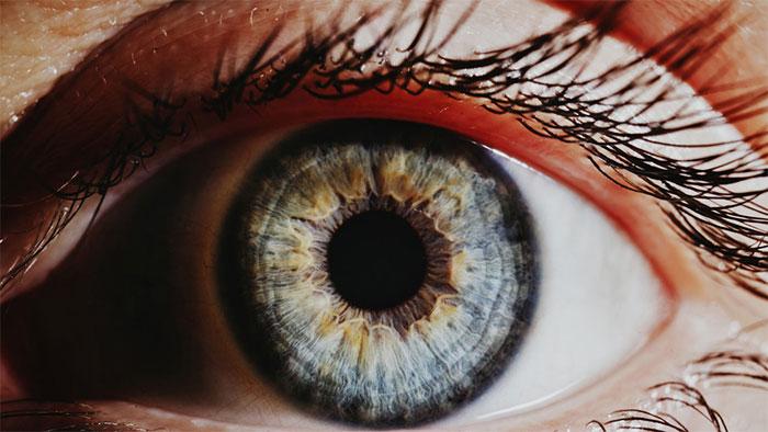 Con người mang sẵn gene có thể giúp hồi phục mắt hỏng