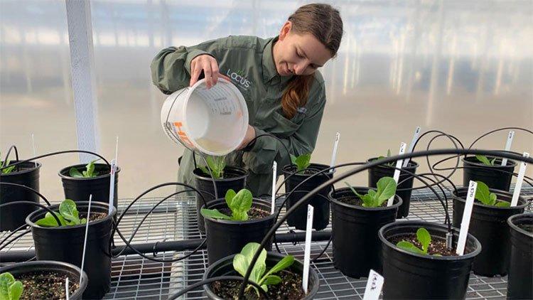 Công nghệ men vi sinh giữ CO2 cho đất