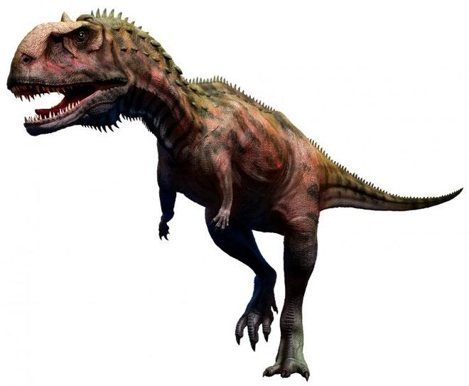 Cứ 2 tháng, loài khủng long này lại thay răng vì ăn quá nhiều thịt