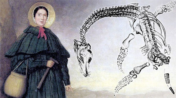Cuộc đời của Mary Anning: Nhà cổ sinh vật học nữ đầu tiên