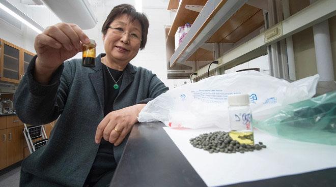 Đã tìm ra cách nhanh nhất để biến nhựa thành xăng