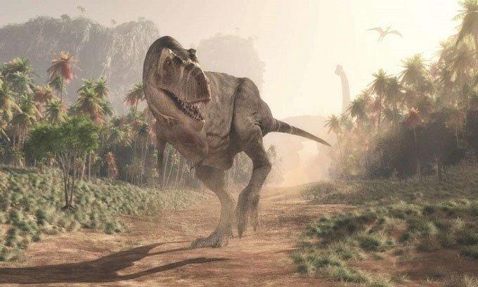 Đã từng có 2,5 tỷ con khủng long bạo chúa thống trị Trái đất