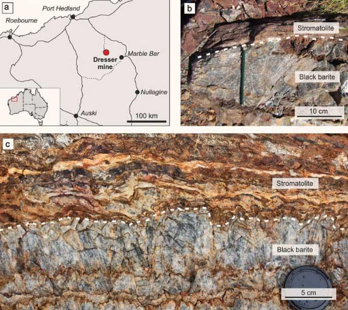 Đào mỏ đá, thấy thứ quý hơn vàng: nhà của sinh vật cổ nhất Trái đất