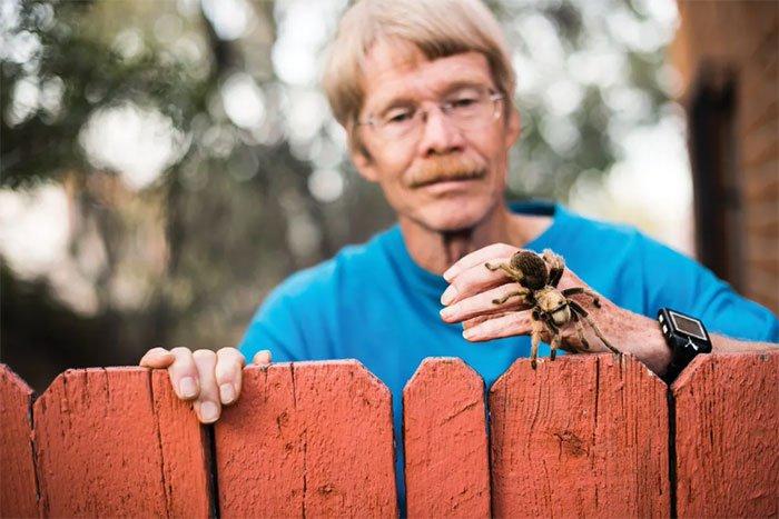 """Để bị cắn hơn 1000 lần, nhà khoa học hoàn thành """"Thang đo độ đau do côn trùng đốt"""""""