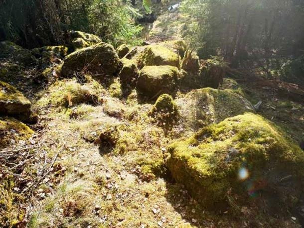 Đi dạo, bắt gặp kho báu đầy trang sức cổ thú rừng vô tình đào lên