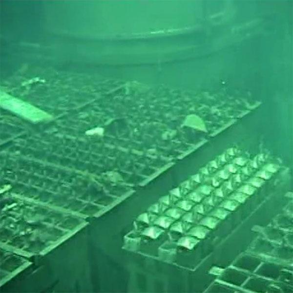 Di dời nhiên liệu hạt nhân Fukushima