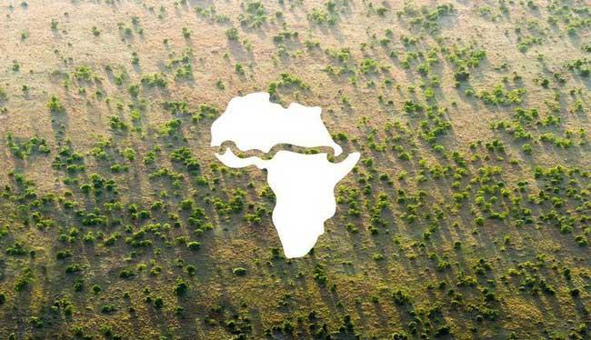 Điều chưa từng có ở châu Phi: Bức tường xanh khổng lồ dài hơn 8.000km trải dài qua 20 nước