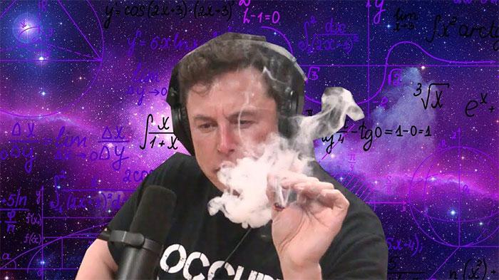 Elon Musk sắp đưa cây cần sa lên vũ trụ