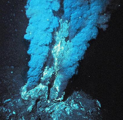 Giới khoa học sửng sốt phát hiện hệ sinh thái mới dưới đáy đại dương sâu 3.800m