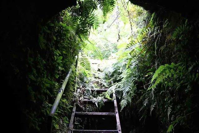 Hà Nội: Bí ẩn hang ngầm dưới đình cổ giáp hồ Tây
