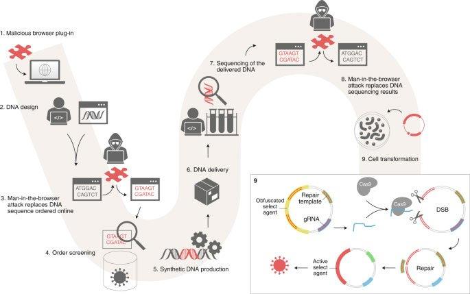 Hacker có thể tấn công vào phòng thí nghiệm, lừa các nhà khoa học tạo ra virus truyền nhiễm như thế nào?