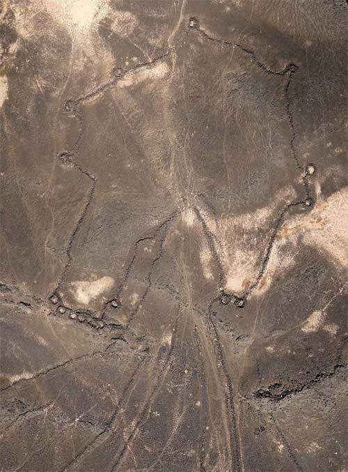 Hàng ngàn cánh diều khổng lồ 9000 năm tuổi rải rác khắp Trung Đông