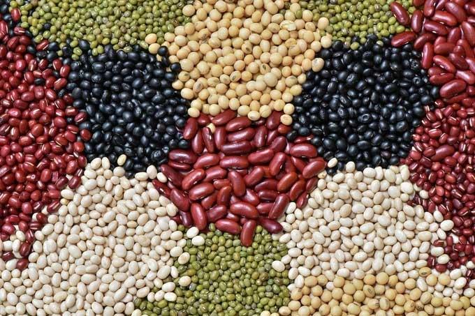 Hạt đậu giúp giảm đau dạ dày