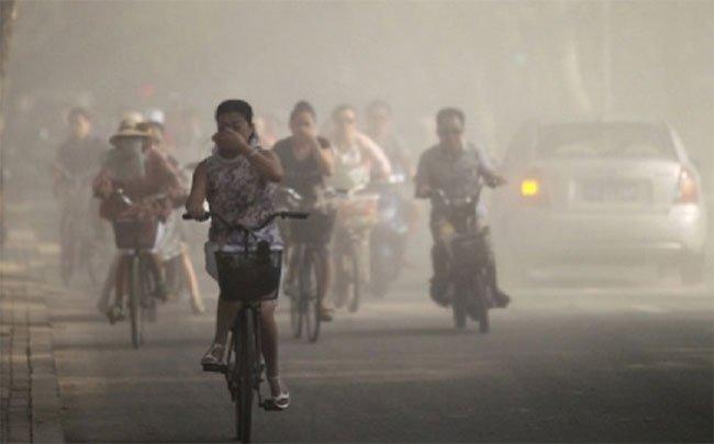 Hạt gây ô nhiễm không khí chui vào nhau thai?