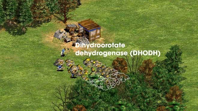 Hiểu cơ chế hoạt động của 5 dòng thuốc Covid-19, từ góc nhìn thú vị của trò chơi Đế Chế