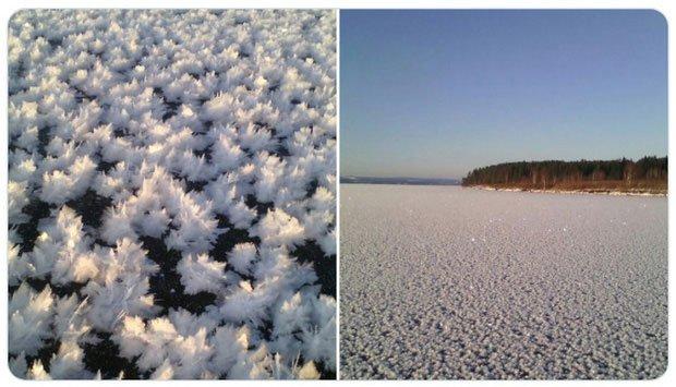 Hình ảnh khắc nghiệt mùa đông nước Nga nhưng lại... siêu đẹp
