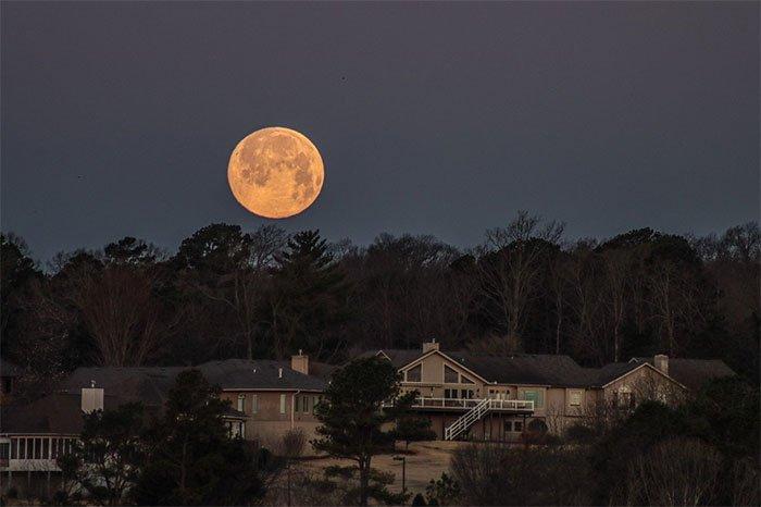 Hình ảnh siêu trăng giun trên khắp thế giới