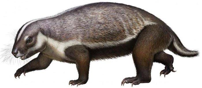 Hình dạng kỳ dị của loài quái thú điên rồ 66 triệu năm tuổi