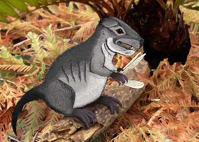 Hóa thạch 220 triệu năm tiết lộ loài thú răng chó mới
