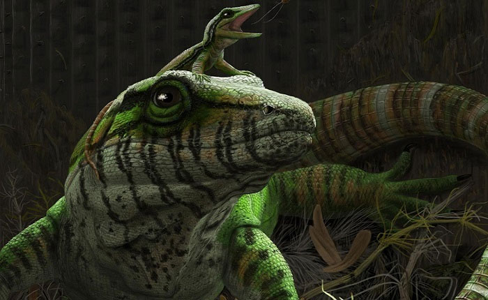 Hóa thạch 309 triệu năm của mẹ con thằn lằn
