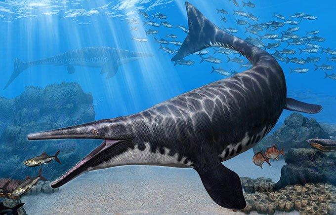 Hóa thạch 66 triệu năm tuổi tiết lộ quái vật biển mới