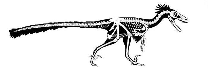 Hóa thạch kỷ Phấn Trắng tiết lộ loài khủng long mới