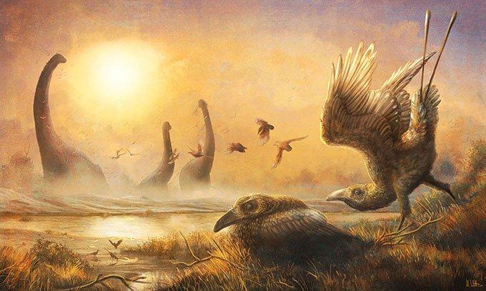 Hóa thạch tiết lộ loài chim răng thỏ kỳ dị sống cùng thời với khủng long