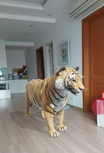 Hướng dẫn xem hình 3D con vật sư tử, mèo, chó, ngựa, cá mập... trên Google