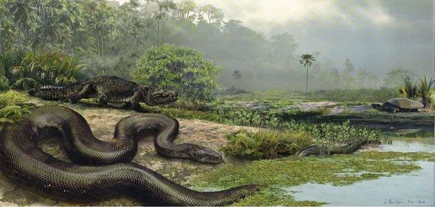 Huyền thoại loài rắn quái vật từng thống trị Colombia thời tiền sử