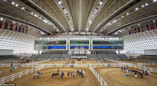 Khách sạn 5 sao dành cho ngựa: Ăn cỏ nhập khẩu, tắm bồn nước nóng