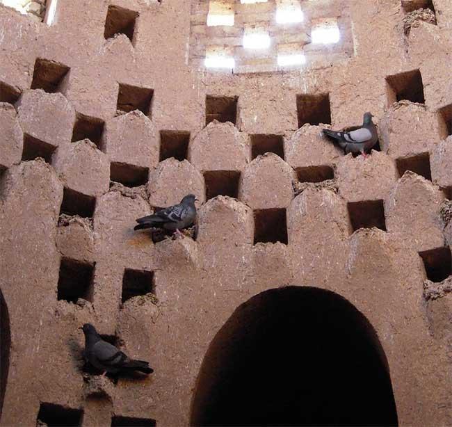 Khám phá tháp chim bồ câu hàng trăm năm tuổi ở Iran