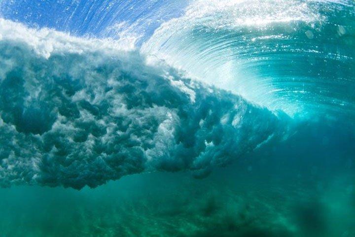 Khi có bão, điều gì xảy ra với các sinh vật dưới biển?