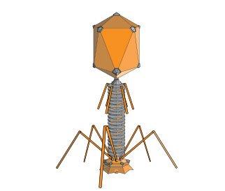 Khoa học phát hiện ra những con virus khổng lồ với khả năng ăn cắp đặc tính loài khác