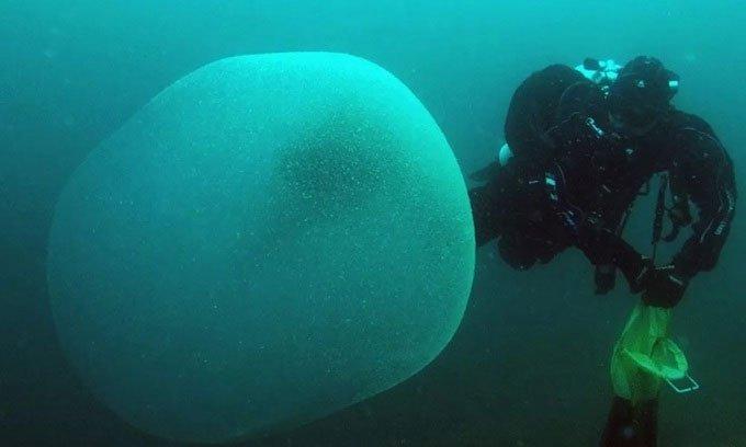 Khối cầu chứa hàng trăm nghìn quả trứng mực dưới biển
