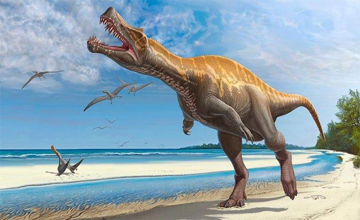 Không chỉ do thiên thạch, lý do chính khiến khủng long tuyệt chủng mới thực bất ngờ