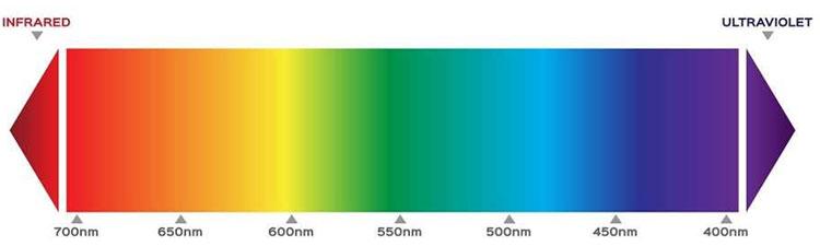 Không có trong bước sóng ánh sáng, vậy màu hồng từ đâu xuất hiện?