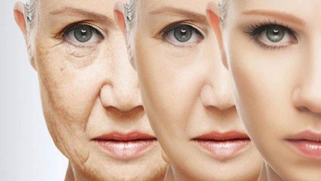 Không gì cản được quá trình lão hóa: Nghiên cứu mới dập tan tranh cãi xung quanh khả năng bất tử