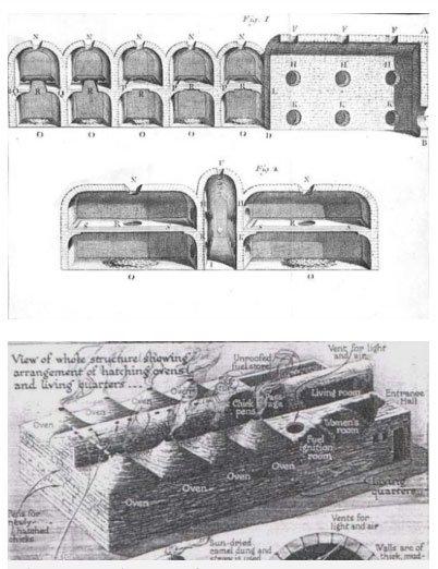 Không phải kim tự tháp, đây mới là công trình giá trị nhất mà người Ai Cập cổ đại để lại cho hậu thế