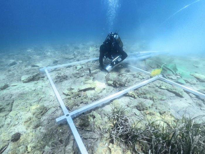 Khu định cư 6.000 năm tuổi dưới vùng nước sâu ở châu Âu