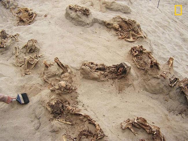 Khu hiến tế trẻ em lớn nhất lịch sử: Hàng trăm bộ xương lộ ra, đã bị lấy mất nội tạng