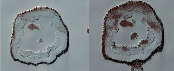 Khuôn mặt cười trên Hỏa Tinh đang tươi hơn