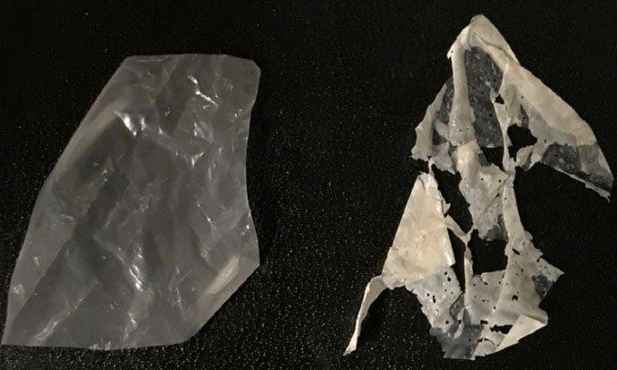 Loại nhựa sinh học có thể tự hủy trong vài ngày