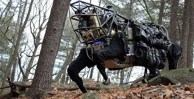 Loài sóc trở thành hình mẫu để quân đội Mỹ học hỏi nhằm thiết kế robot trong tương lai