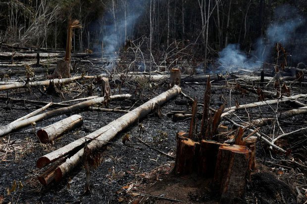 Loạt ảnh gây sốc về rừng Amazon bùng cháy với tốc độ kỷ lục