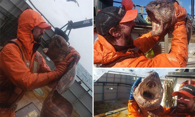 Lươn quái vật khổng lồ sa lưới ngư dân