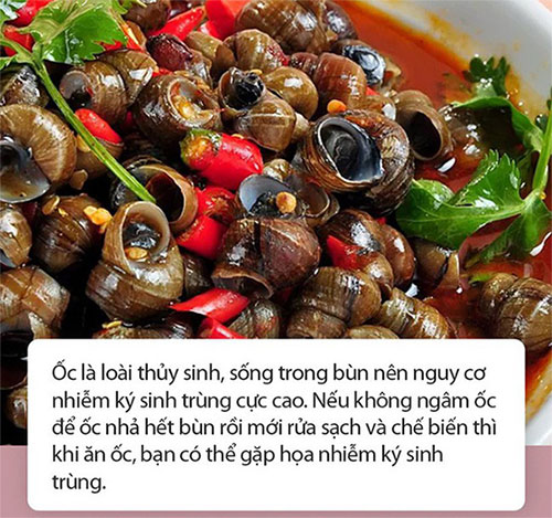Lưu ý khi ăn ốc để tránh rước họa vào thân