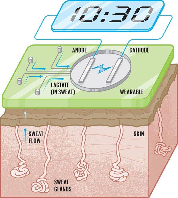 Mồ hôi sẽ là nguồn năng lượng cho thiết bị đeo thế hệ tiếp theo?