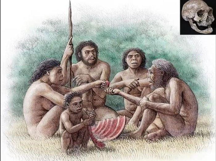 Mộ phần người khác loài và quái thú 1,8 triệu tuổi: Lịch sử thay đổi?