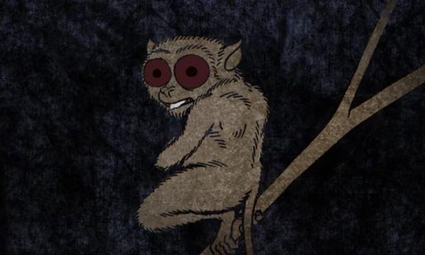 Mỗi loài động vật có bí quyết nhìn trong bóng đêm khác nhau