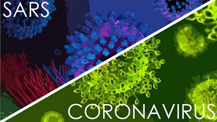 Một bệnh nhân SARS có kháng thể vô hiệu hóa mọi biến chủng nCoV